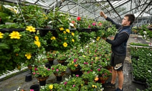 Staff at Gouldings Garden Centre in Scotland.