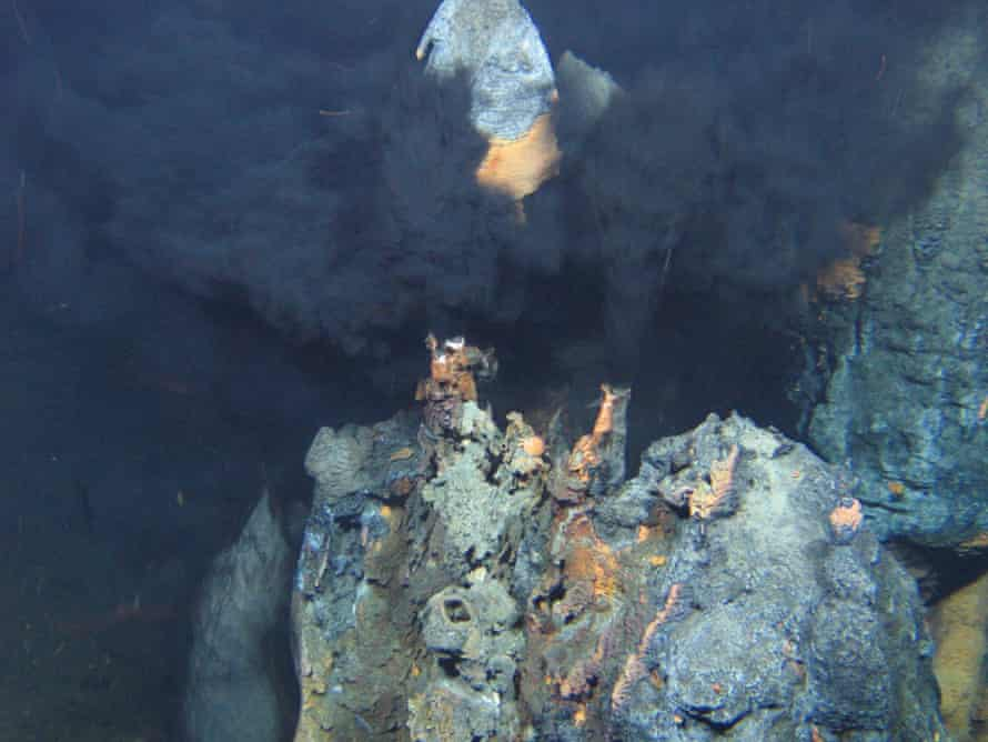 Mineral-rich hot water bursts out of of the Earth's crust through hydrothermal vents.