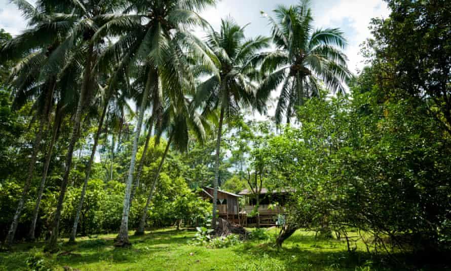 A Bribri community in Talamanca, Costa Rica.