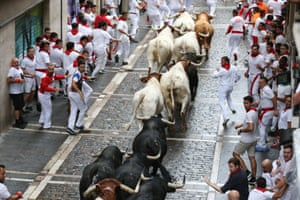 Bulls of the Puerto San Lorenzo bull ranch