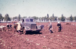 Workers on a collective farm in the Donetsk region of Soviet Ukraine