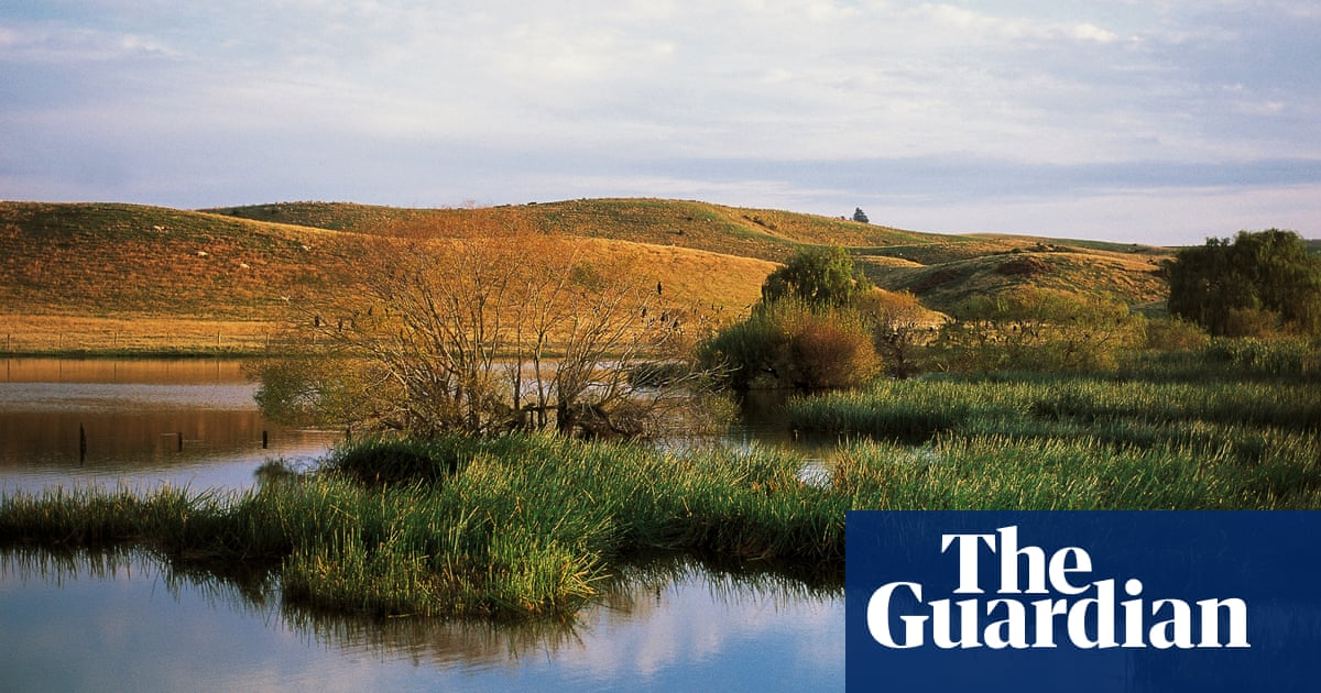 New Zealand has lost thousands of hectares of wetlands in past decades, study shows
