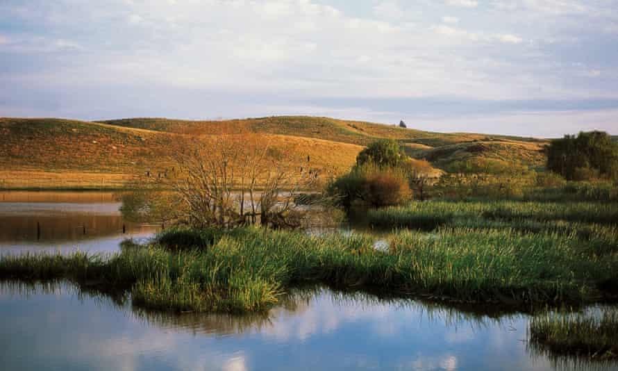 Lagoon near Napier