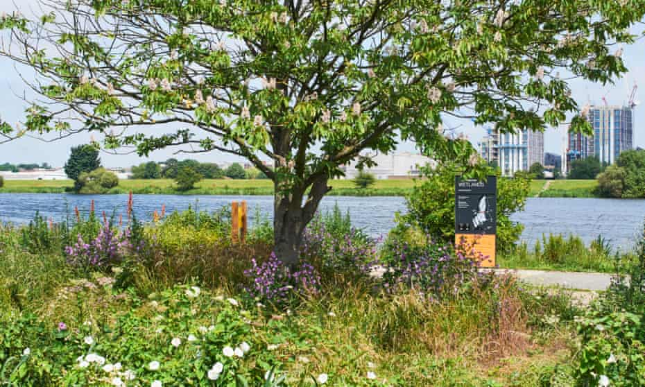 The entrance to Walthamstow Wetlands, North London UK, with new apartments under construction in the background