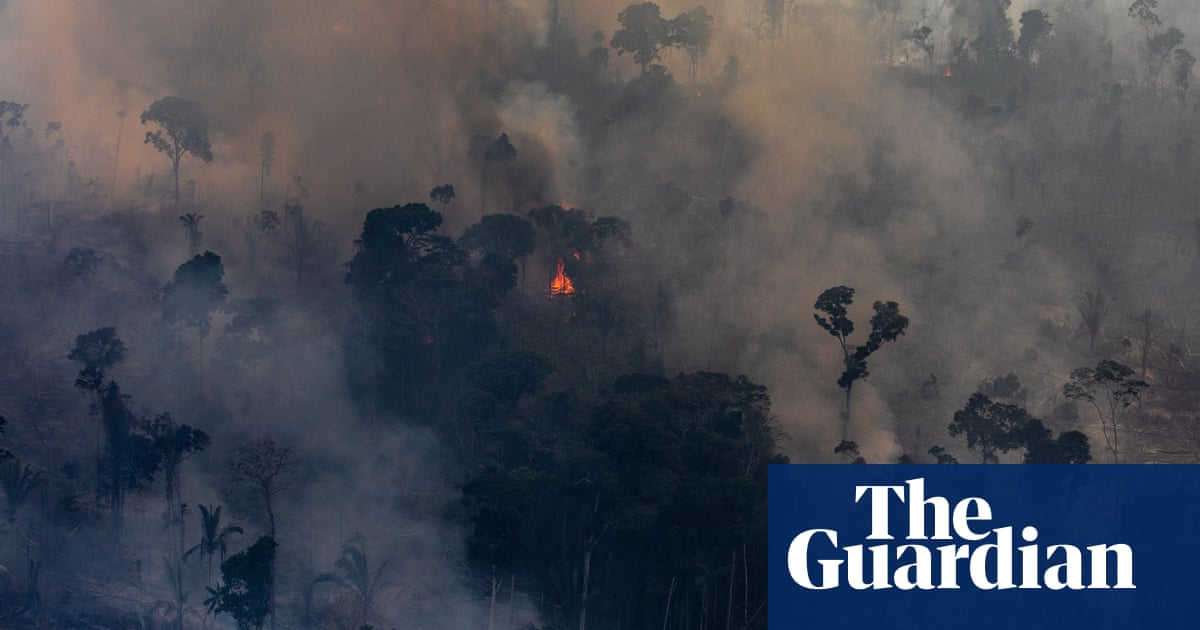 Police raid office of Brazil NGO linked to brigade that helped battle Amazon fires