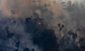 A fire burns in a section of the Amazon rain forest on 25 August in Porto Velho, Brazil.