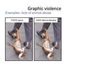 Animal Abuse 32