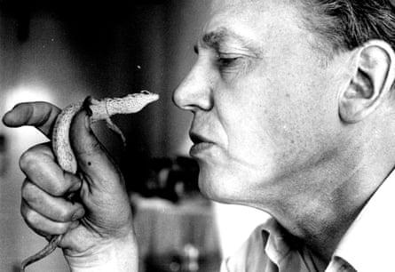 David Attenborough holding a pygmy goanna up to his face, 1984