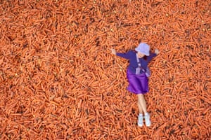 London, UKStudent Lauren Gallagher sits on the art installation 'Grounding' by Rafael Perez Evans, which is made up of 29 tonnes of unwanted carrots ouside Goldsmiths College