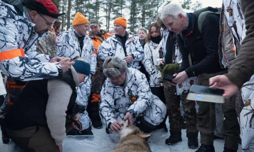 The wolf hunt leader, Arne Sveen, after the hunt
