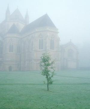 Morning fog, Downside Abbey