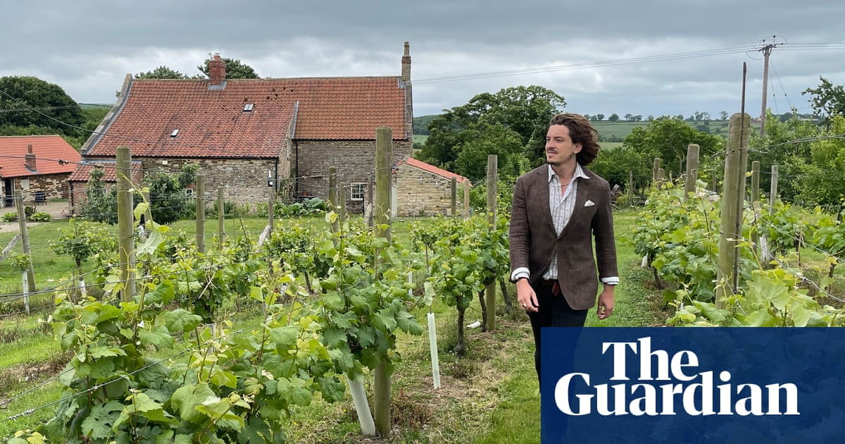 Wine in the Wolds: a tour of Yorkshire's vineyards