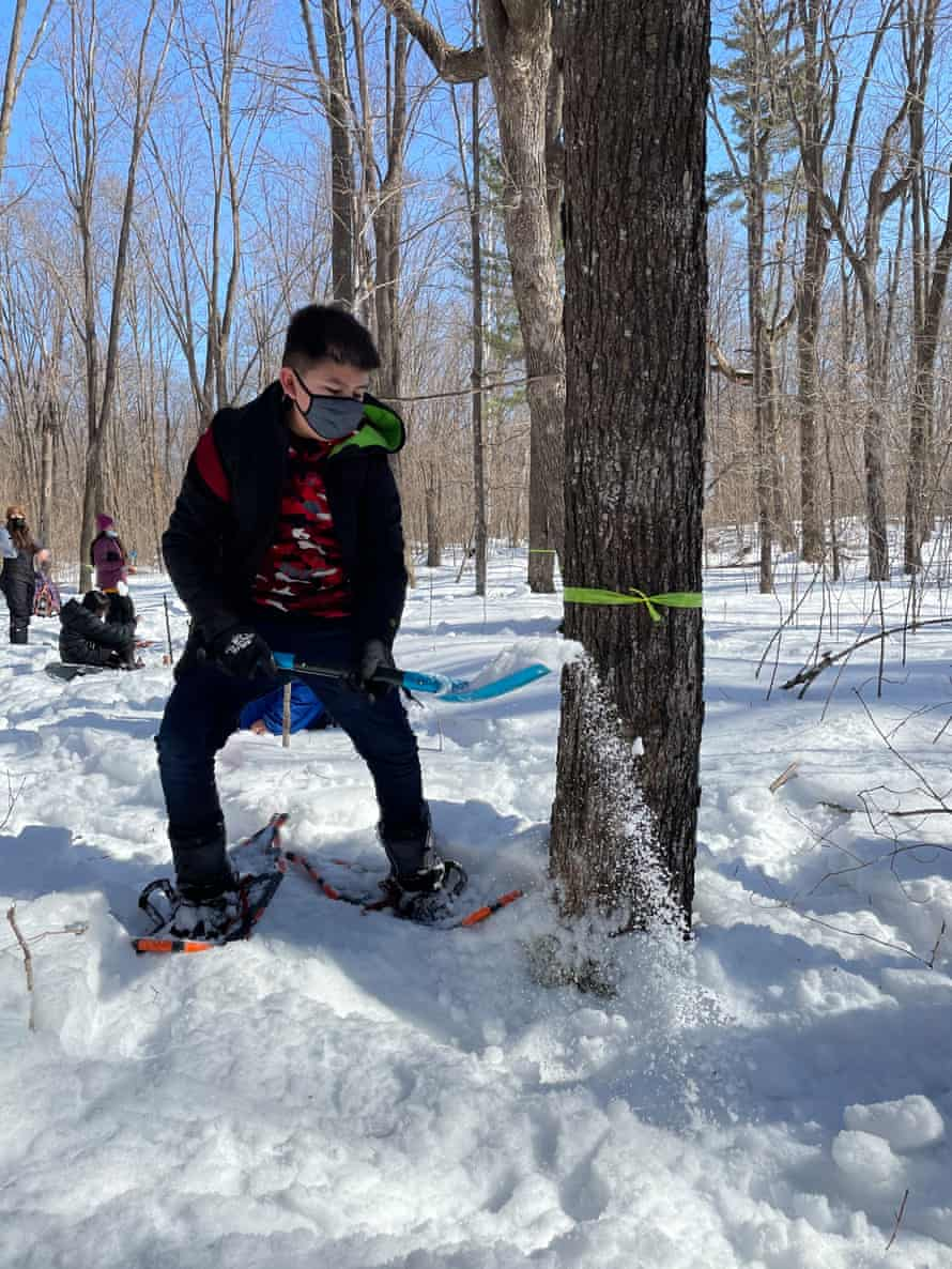 Makoons Quagon, a fifth-grader at Waadookodaading, shovels snow in preparation for collecting sap to make maple syrup.