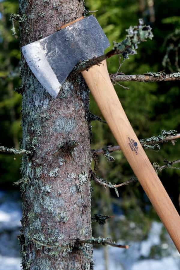 'Completely gripping' ... a Swedish Gränsfors American Felling Axe, pictured in Norwegian Wood.