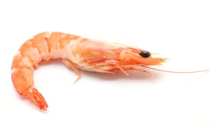 Don't discard prawn heads after you have eaten the tail meat ...