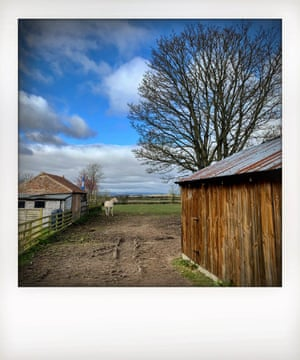 farm buildings and sky