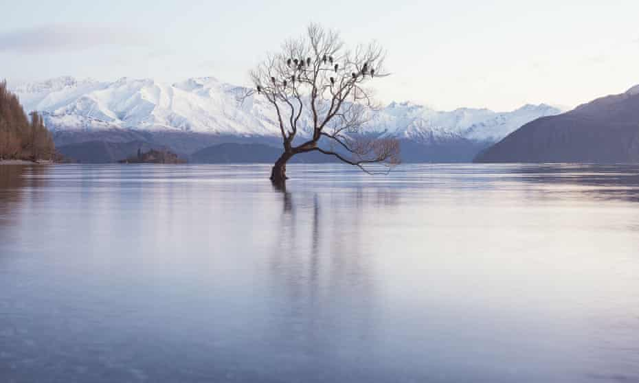 Lake Wanaka, New Zealand, where Peter Thiel owns a large parcel of land