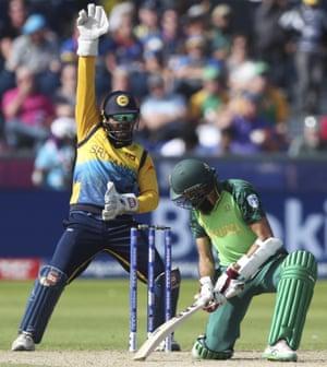 Sri Lanka's wicketkeeper Perera appeals unsuccessfully for LBW against Amla.