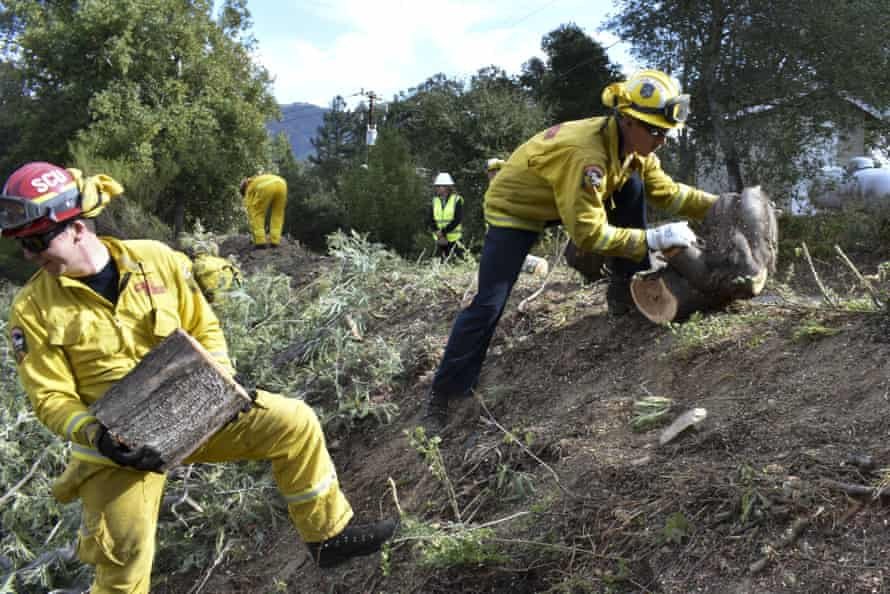 A fire prevention crew hauls away sections of a tree they cut down near Redwood Estates, California.