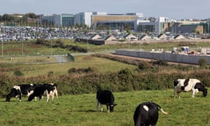 The Apple campus in Cork.