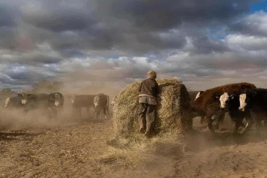 Harry Taylor, 6, plays on the dust bowl his family farm has become during the drought.