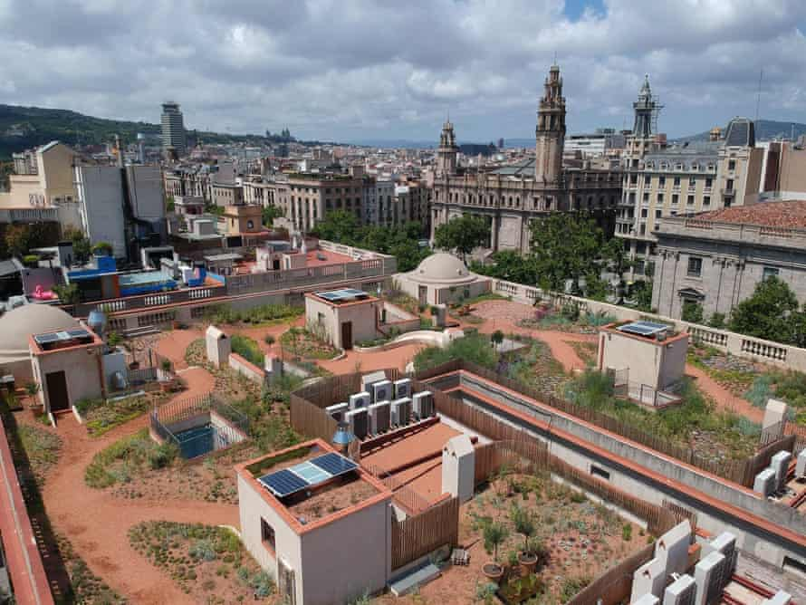 Sergio Carratalá has created Els Terrats d'en Xifre – a roof garden planted with native perennials and with nesting and feeding places for birds.