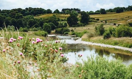 The River Wharfe near Grassington