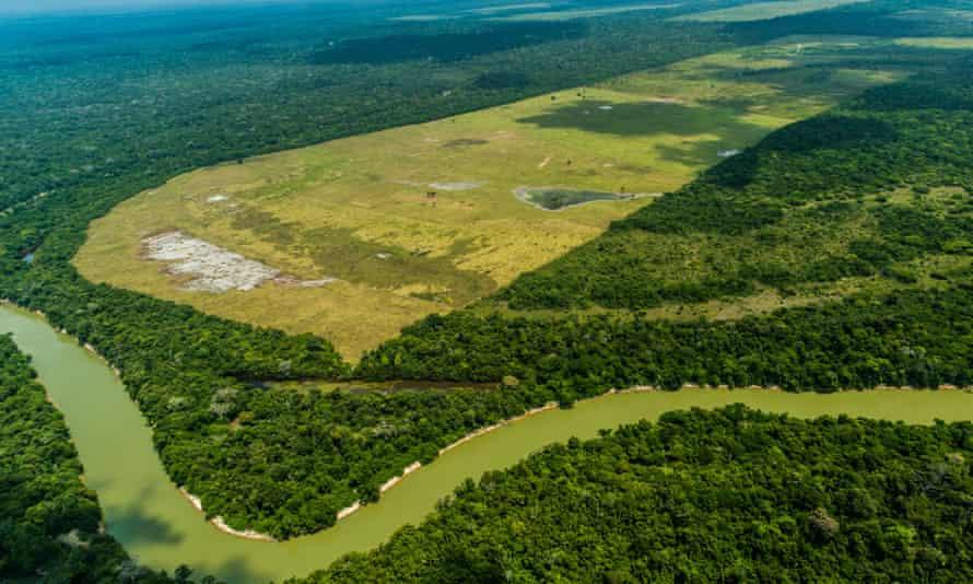 Deforestation of Alto Turiacu Indigenous Land in Brazil.