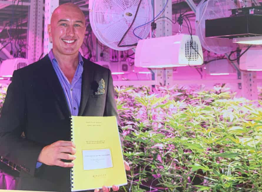 Mark says he wanted to pursue a PhD in cannabis in the 1990s, but the university considered the subject too taboo.