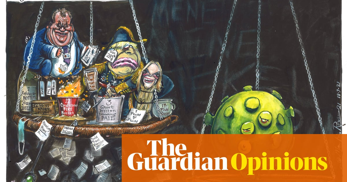 Martin Rowson on a planned review of laws deriving from the EU – cartoon