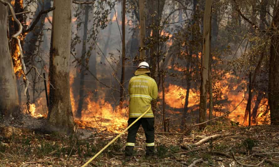 A National Parks and Wildlife crew member fights flames  near Taree on 12 November
