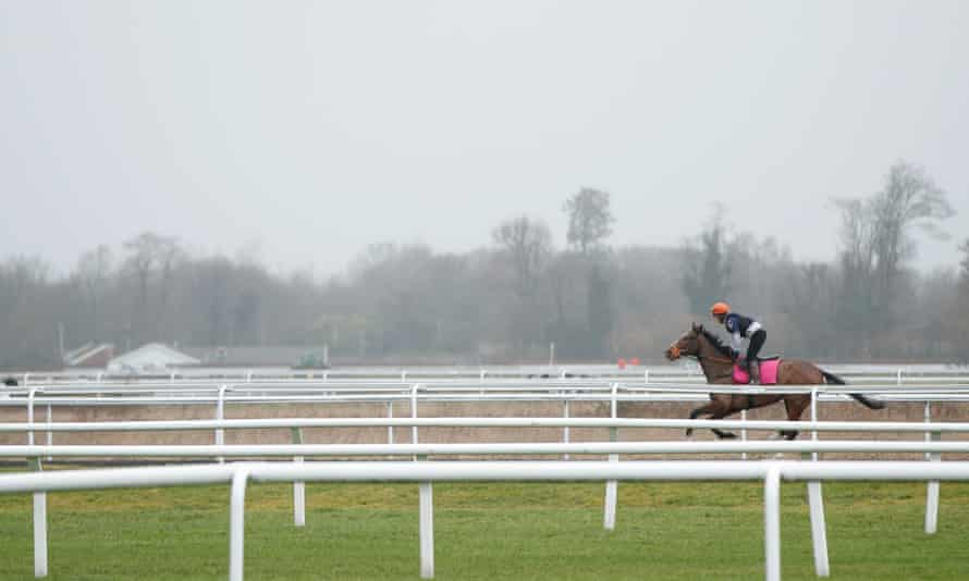 A solitary horse is ridden around Kempton Park, where a full day's racing was planned before the equine flu outbreak.