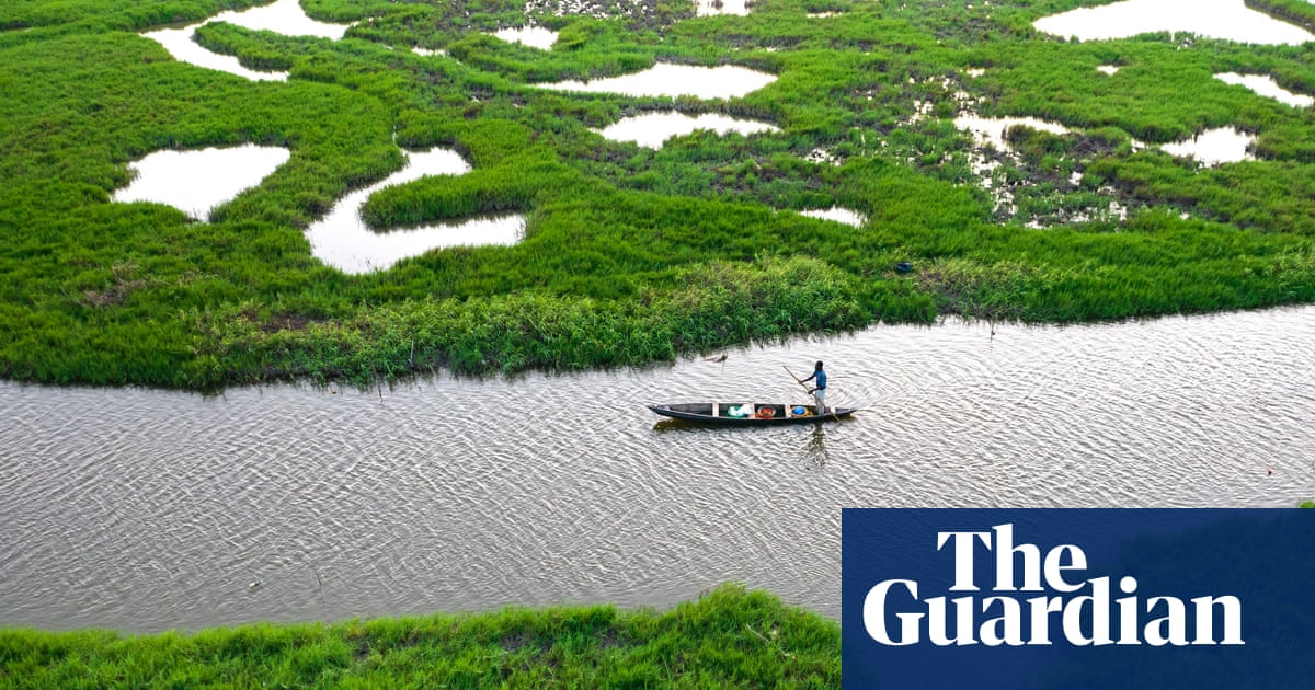 Climate crisis threatens access to nutrients in fish, study finds