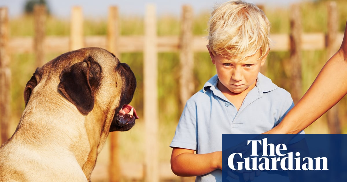 Readers reply: how can you prevent dogs jumping at children? How should I respond when it happens?