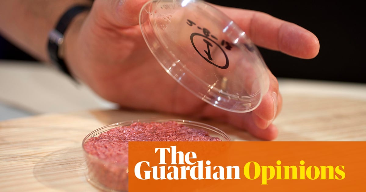 Is the world ready for lab-grown meat?