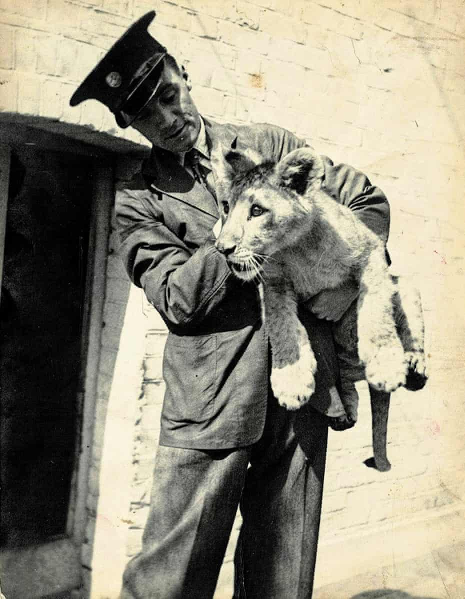Singh guarding a zoo at the London Zoo in 1935. The zoo's companions loved Singh because he loved raising and loving children. Singh would pinch his hats and chase them around his fences - a favorite sport.