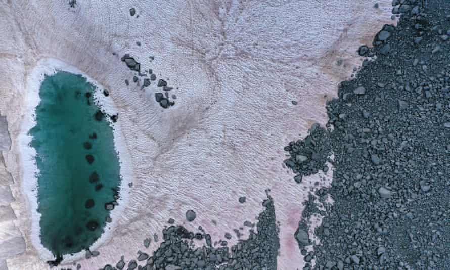 An aerial picture taken above the Presena glacier near Pellizzano, shows pink coloured snow.