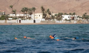 Swimming in the Red Sea, Egypt with Swim Trek