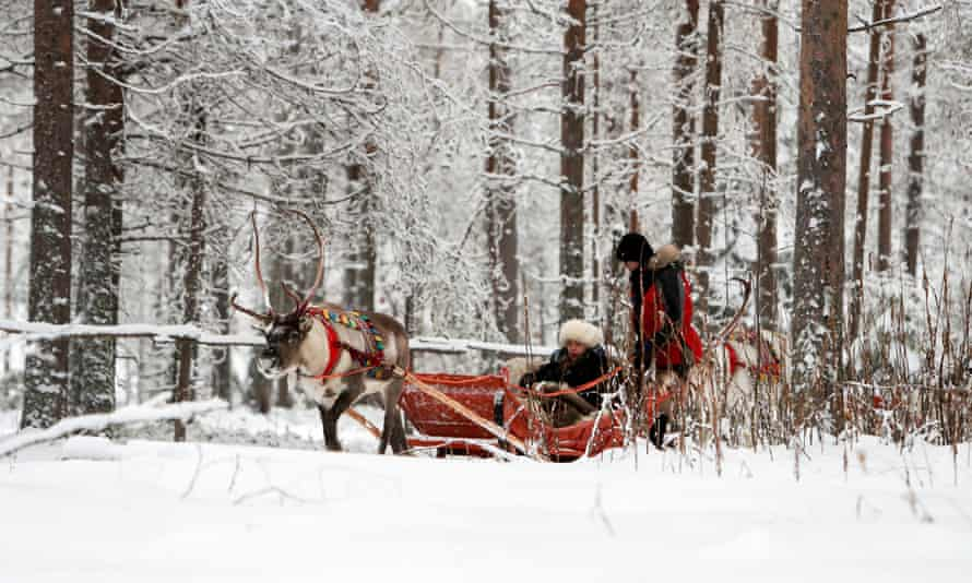 Tourists on a reindeer ride in Rovaniemi, the capital of Finnish Lapland.