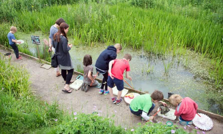 Children pond dipping at the Golden Hill community garden in Bristol.
