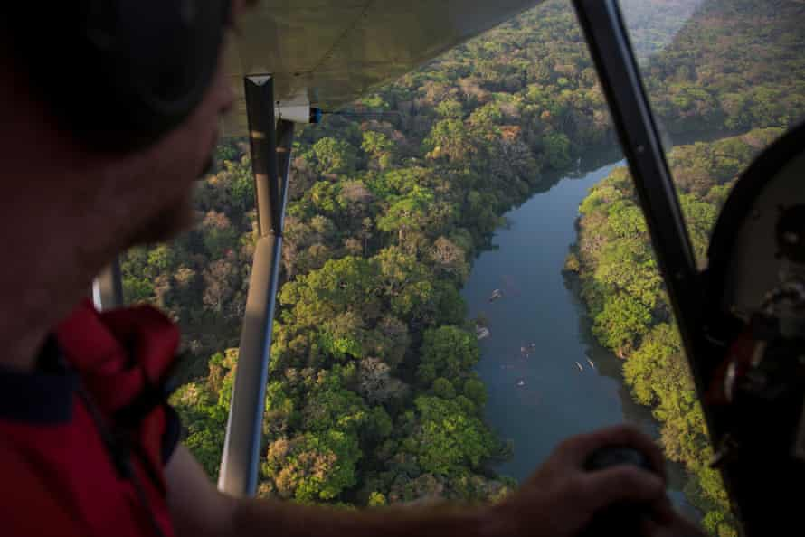 The River Chinko winds through the south of this vast park, surrounded by lush tropical forest. In its waters are fish, crocodiles and hippo - all attractive targets for poachers who sneak into the reserve.