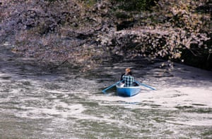 Visitors ride a boat in the Chidorigafuchi moat covered with petals of cherry blossoms in Tokyo, Japan