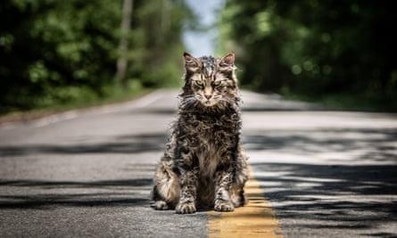 Recent advances in creepy cat makeup … Pet Sematary.