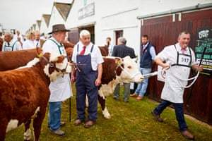 The Great Yorkshire show in Harrogate, England