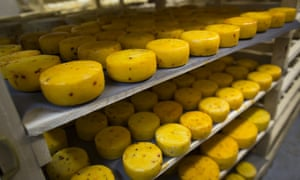 A shelf full of cheese made in Krutovo, Russia.