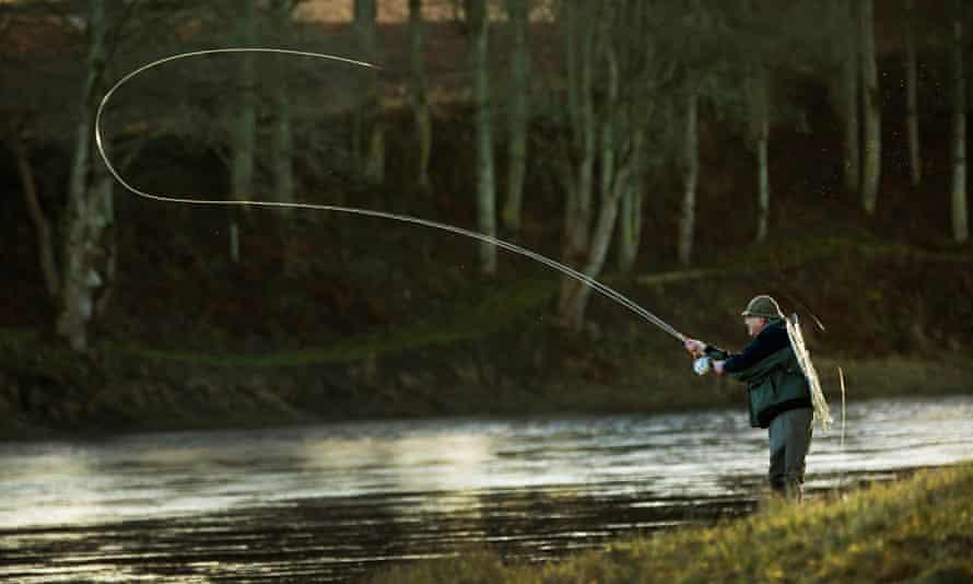 فضای باز عالی ... ماهیگیری ماهی قزل آلا در Tay.