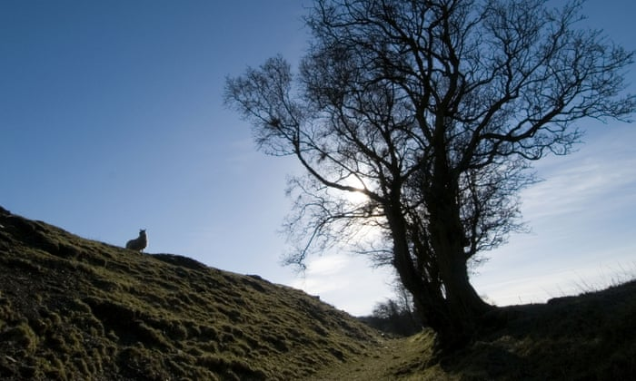 20 superb UK walks – for families, day-trippers and long