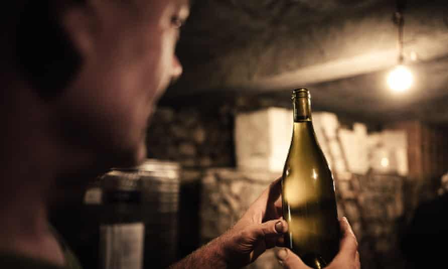 Winemaker gazing at wine bottle in cellar