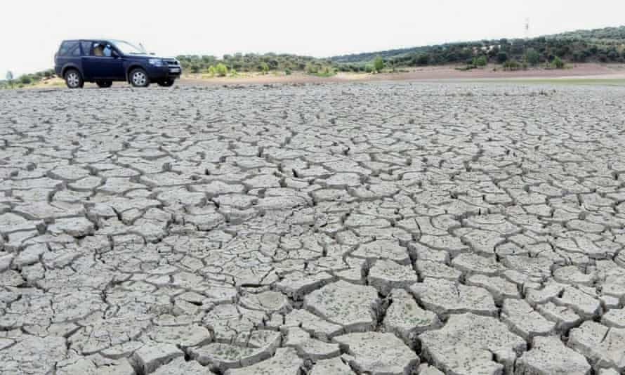 The Ricobayo reservoir, in Zamora, this August after it was drained by Iberdrola, Spain's second biggest power company.