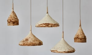 'Mycelium and Timber'